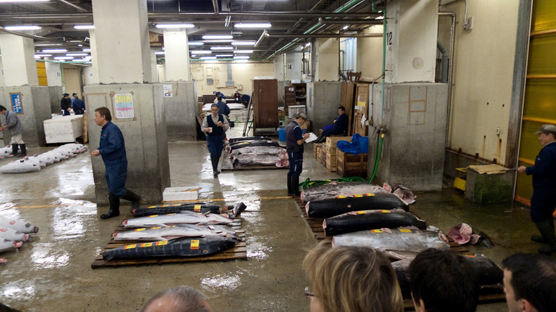 """Sellers and bidders getting ready for the 5:30am Tsukiji Fish Market - <a href=""""http://en.wikipedia.org/wiki/Tsukiji_fish_market"""">http://en.wikipedia.org/wiki/Tsukiji_fish_market</a>"""