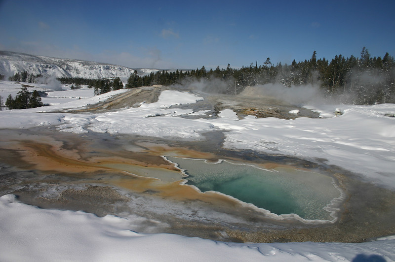 Yellowstone Feb. 2008