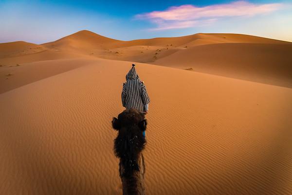 Camel Ride through the Sand Dunes
