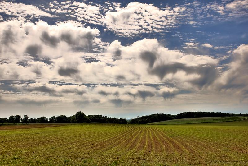 dramatische luchten boven het maisveld in Torgny