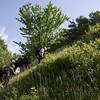 helling van Epiez - behoorlijk steil...