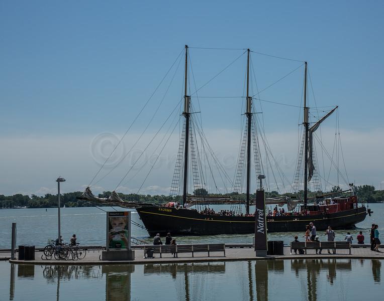 Tour schooner coming into moor.