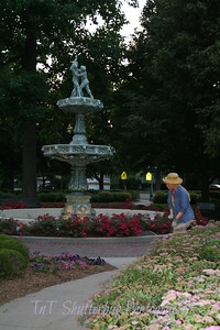 The water fountain outside the Library surrounded by flowers.  Local gardner taking care of the Library's flowers.
