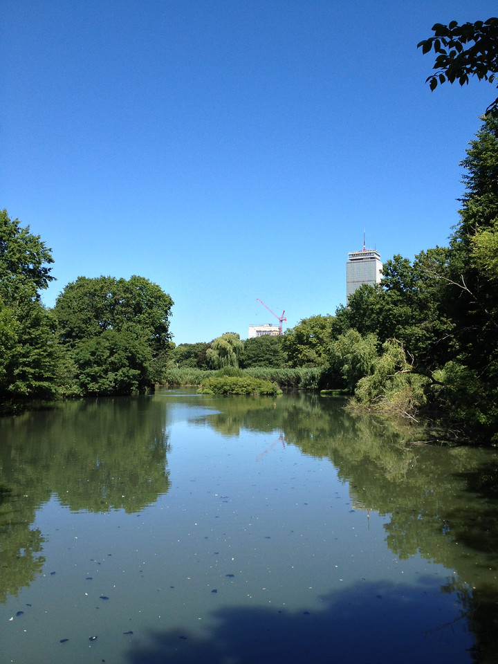 The Muddy River with the Prudential Tower in the background.
