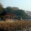 Hangzhou - on the shore of West Lake