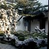 Shanghai - a Yu Garden scene featuring a Taihu (Tai Lake) rock structure