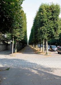 Boulevard de la Reine