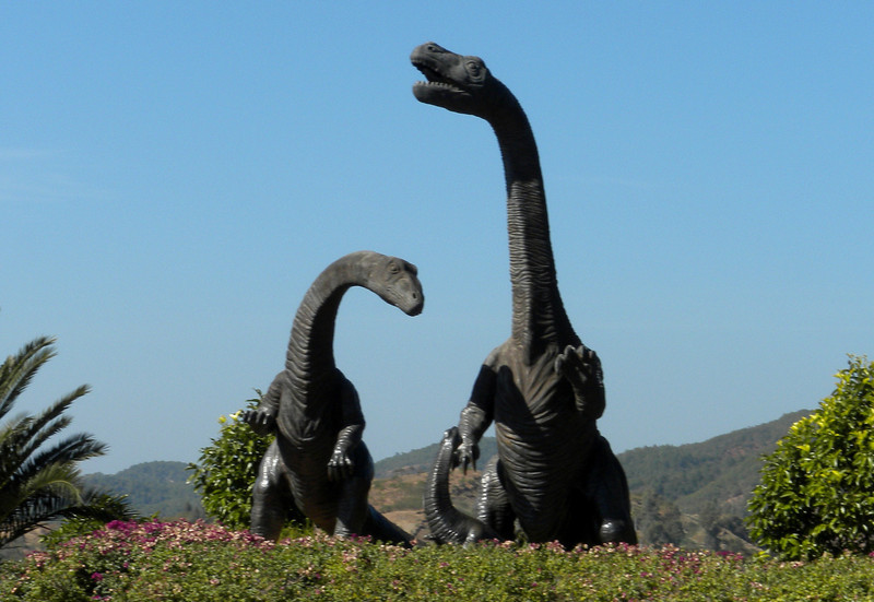 Kunming (昆明) - Museum and active dinosaur excavation site, named Dinosaur Valley, near Kunming.  These two beasts are man-made artifacts of the campus.