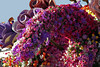 Flower display on the Salute to Rose Bowl float