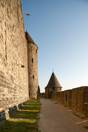 OFr Carcassonne 88