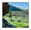 A view in Rocky Mountain National Park along Trailridge Road; shot through an open side window in a moving vehicle