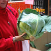 Huge cabbage--clerk weighed it for us---13 lbs. 39cents per pound. there was a whole big box full all much the same size.
