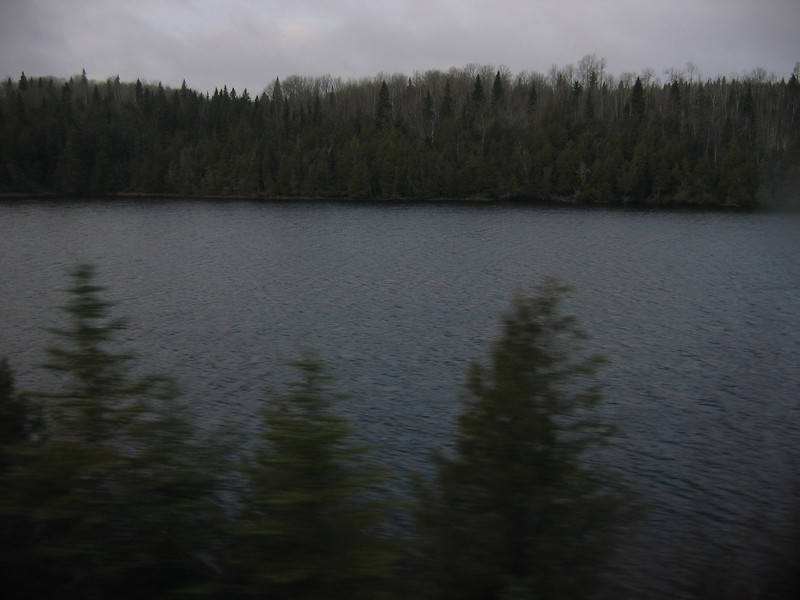 more lakes and forests
