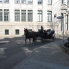 Horse and carriage.  very quaing   but TOO COLD.