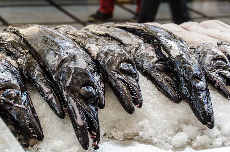Funchal Fish Market - Scabbard fish