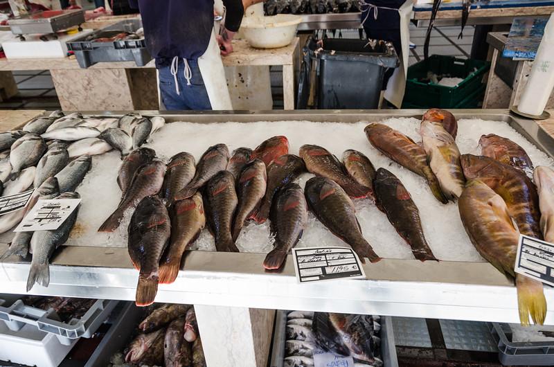 Funchal Fish Market - Cardinal, Parrot & Seabream