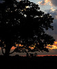 Gettysburg National Military Park; Gettysburg, PA: National Park Service.