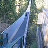 Capilano Suspension bridge in Vancouver BC -- 450 feet across, 250 feet above the river!