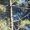 capilano river from the suspension bridge