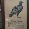 Milford Lake KS Turkey Vulture Sign