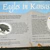 Milford Lake KS Eagle Sign