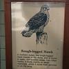 Milford Lake KS Hawk: Rough Legged Hawk Sign