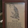 Milford Lake KS Barn Owl Sign