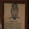 Milford Lake KS Barred Owl Sign