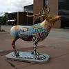 Elkhart IN Matty and the Birds Elk