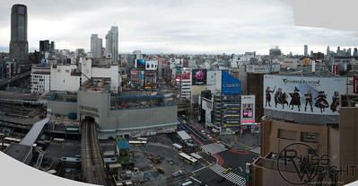 View from Hikarie Sky Tower, Shibuya, Japan