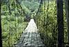 Walking bridge across the Cumberland River, Partridge, Kentucky.