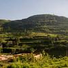 _DSC4541e Uganda Hills