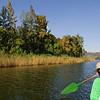 _DSC4515e Bird Boat tour