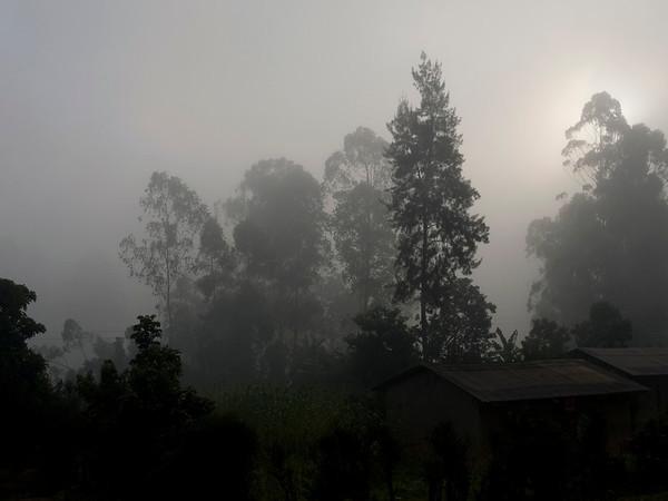 _DSC4524e Fog