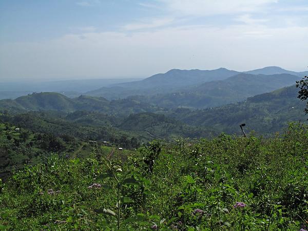 IMG_1737e Climb to Gorillas