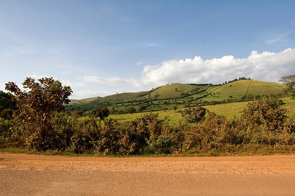 _DSC3435e Open Landscape