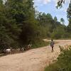 _DSC3708e Boy w goats Mt Road