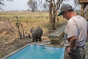 A baby elephant visits me.  Photo taken by Kirk Hamilton