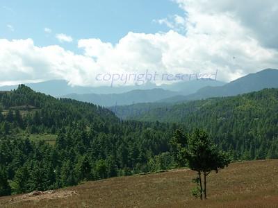 Travel Bumthang to Wangdue