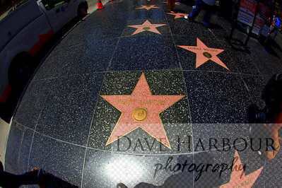 Hollywood Walk of Fame, stars