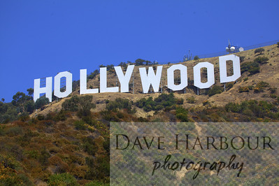 Hollywood sign and green brush lower 2/3