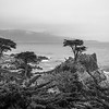 Cypress Point, Carmel