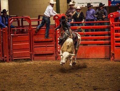 Rider on Bull in Fort Worth Stockyard
