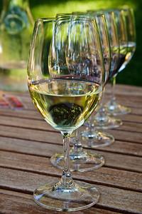 Wine tasting glasses