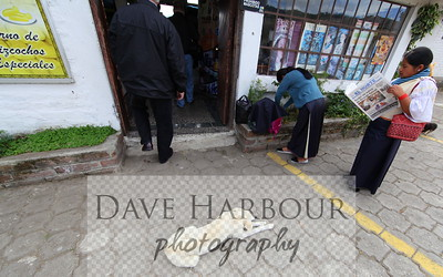 Animal Scenes.  Dog and customers.  Mira Lago - Ecuador - Photo by Dave Harbour