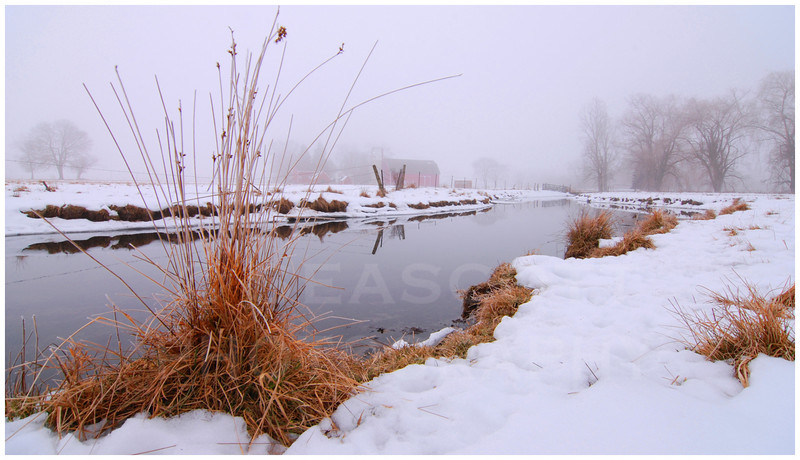 January thaw at Staebler Farm, Washtenaw County, Michigan.