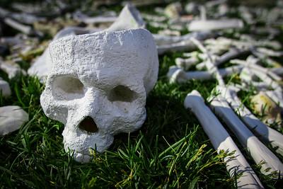 One Million Bones Skull