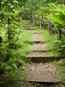 Dirt Stairs P1010790