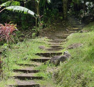 Stairs P1010815