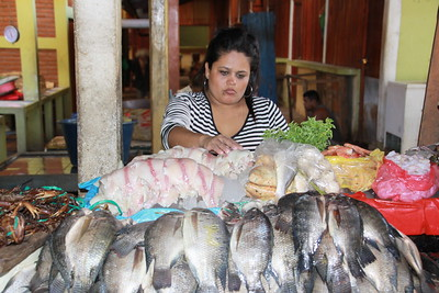 Fish in market in Grenada